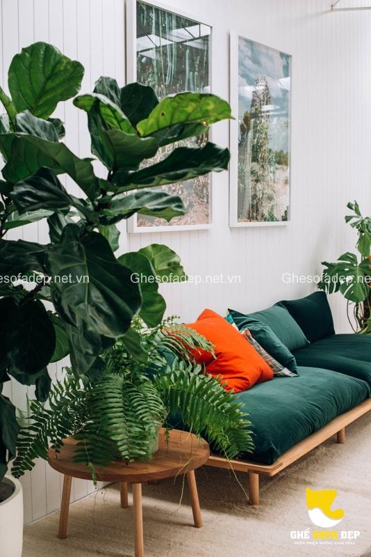 Thư giãn trong không gian tràn đầy màu xanh của cây cối thế này, bạn sẽ nhanh chóng cân bằng lại được ngay thôi